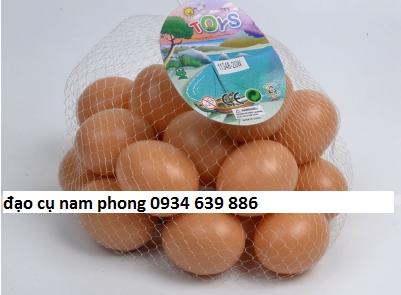 Túi trứng DC665