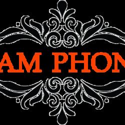 Nam Phong Logo